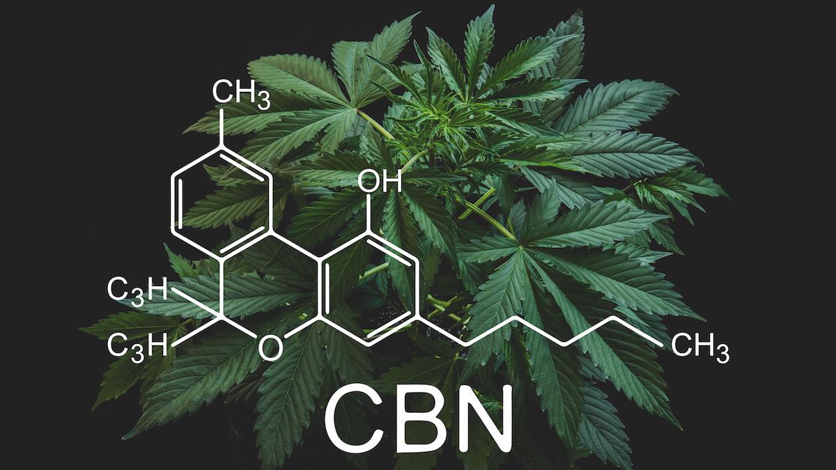 cbn drug test
